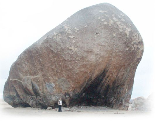 Rock_barb2.jpg