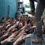 <i>The Walking Dead</i> Finally Reveals Glenn's Fate