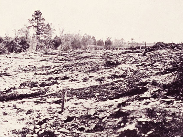The Haunted Civil War Battleground of Cold Harbor  Full-body apparitions of soldiers wander the grounds