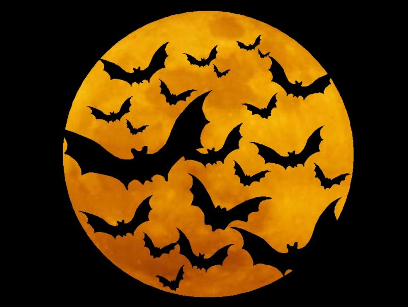 Halloween Symbols – Release the Bats Bring on the furtive, winged, nocturnal mammals that roost upside down in creepy caves, decrepit barns, and moldering crypts