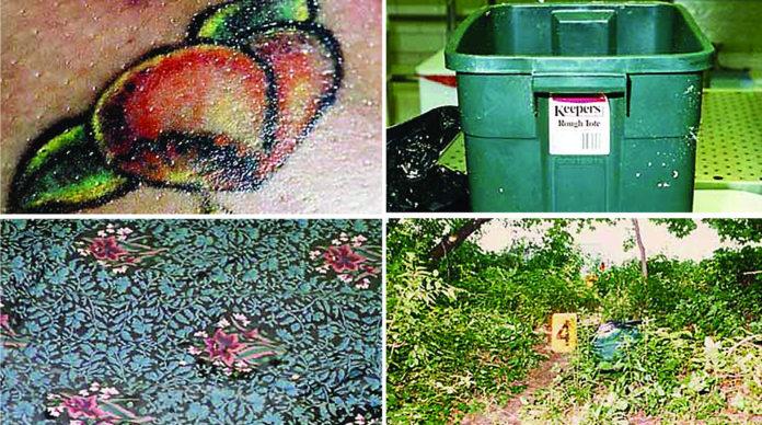 The Killing Season Peaches images