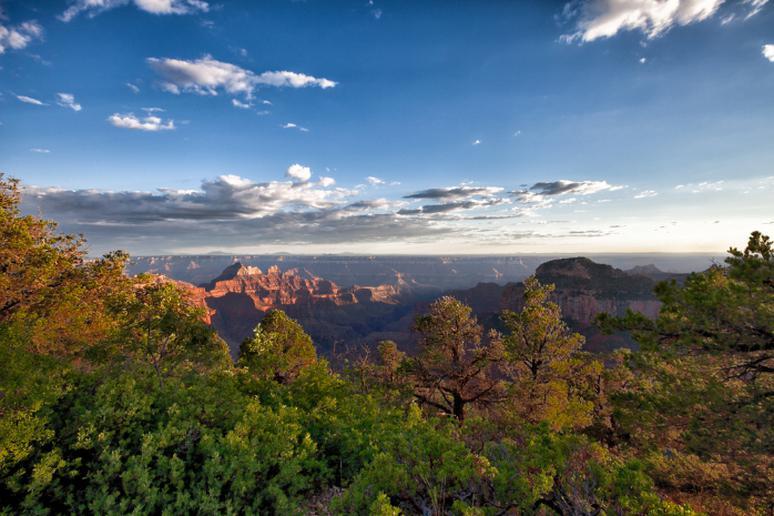 Grand Canyon Transept Trail