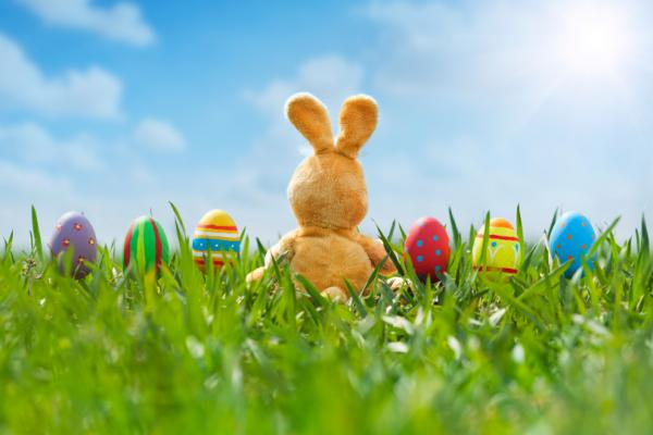 Weird Easter – What's Up with the Easter Bunny? The big goofy rabbit hops around the world delivering baskets full of colored eggs and candy to the kiddies
