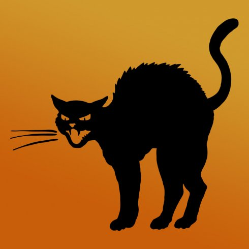 Halloween Symbols – The Black Cat From ancient Egypt to the witches broomstick
